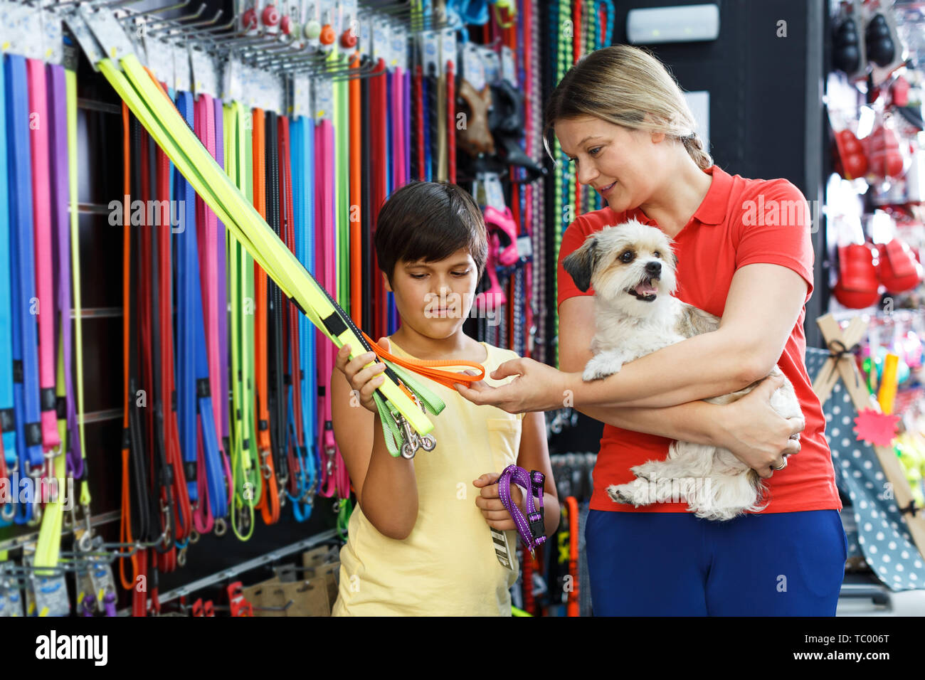 Preteen boy with mother choosing accessories for their havanese puppy in pet shop - Stock Image