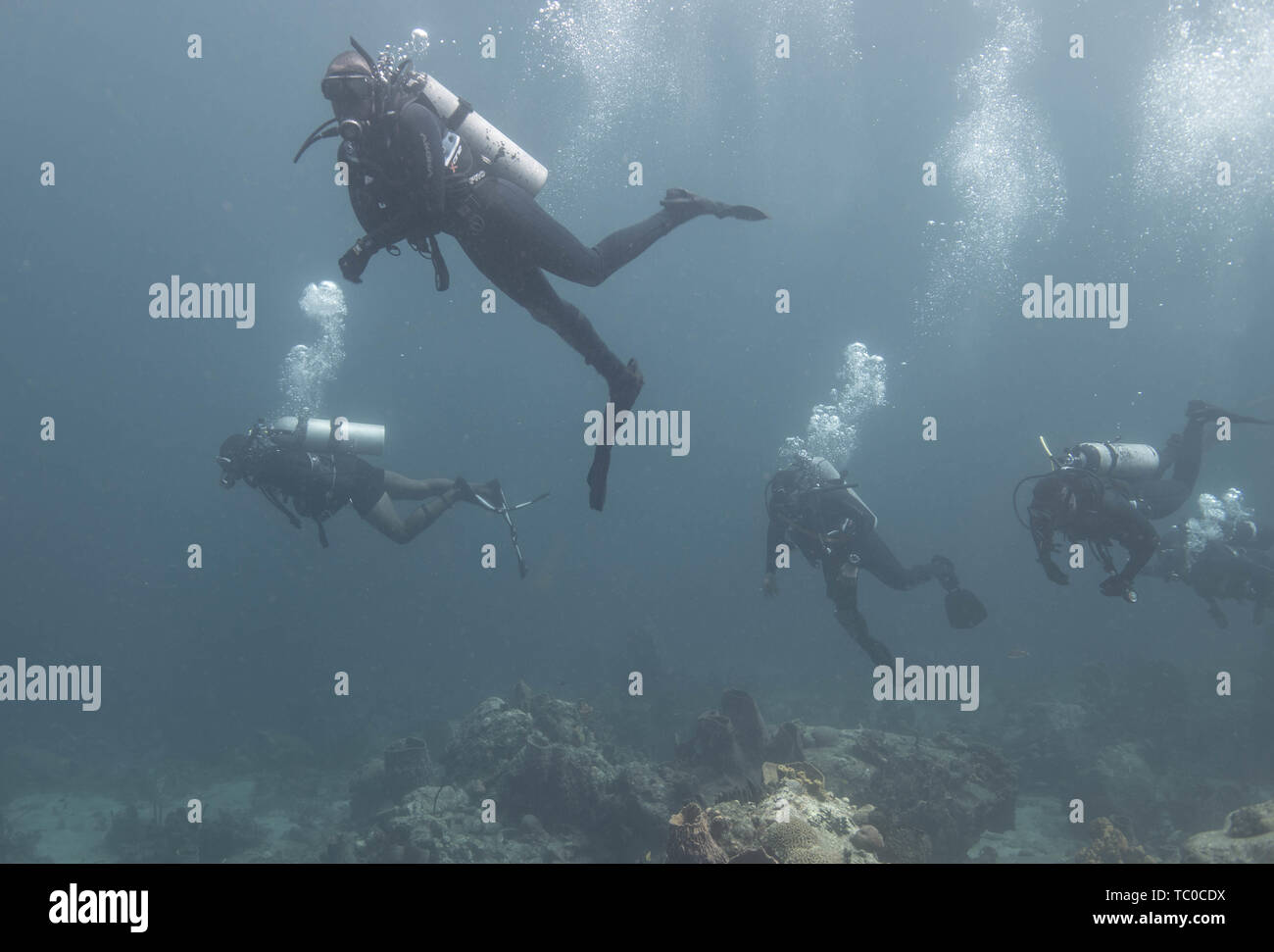Canadian Forces Clearance Divers from Fleet Diving Unit (Atlantic) conduct a check-out dive with divers from St. Vincent and the Grenadines, Mexico, Bahamas and Trinidad and Tobago, during Exercise TRADEWINDS 19 in St.Vincent and the Grenadines, on 2 June, 2019.     In its 35th year, 22 nations are participating in Exercise TRADEWINDS to promote regional security as well as humanitarian assistance and disaster relief.    Photo: MCpl True-dee McCarthy, Canadian Forces Combat Camera   IS03-2019-0003-006 - Stock Image