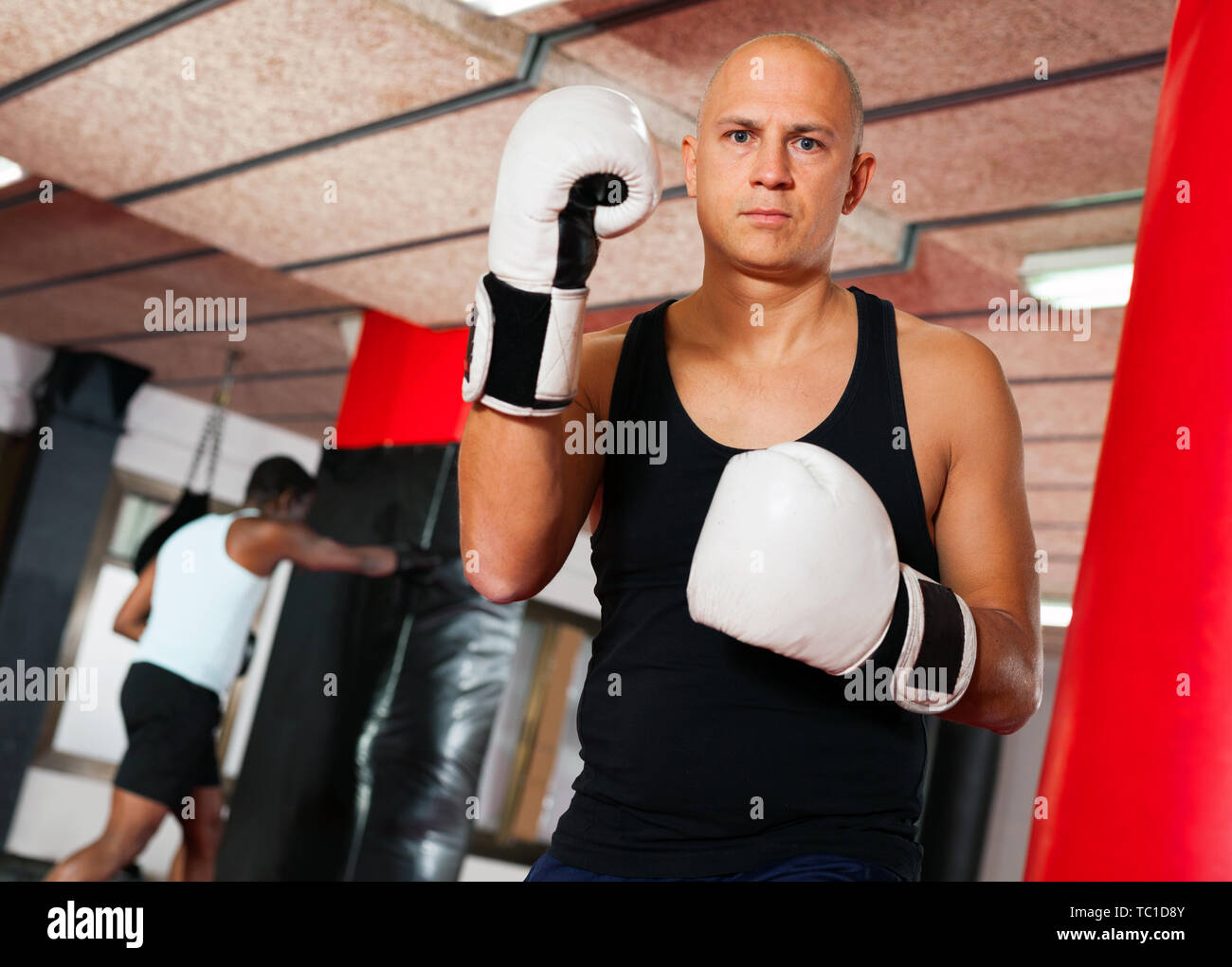 Training of cheerful positive muscular boxers in the gym - Stock Image