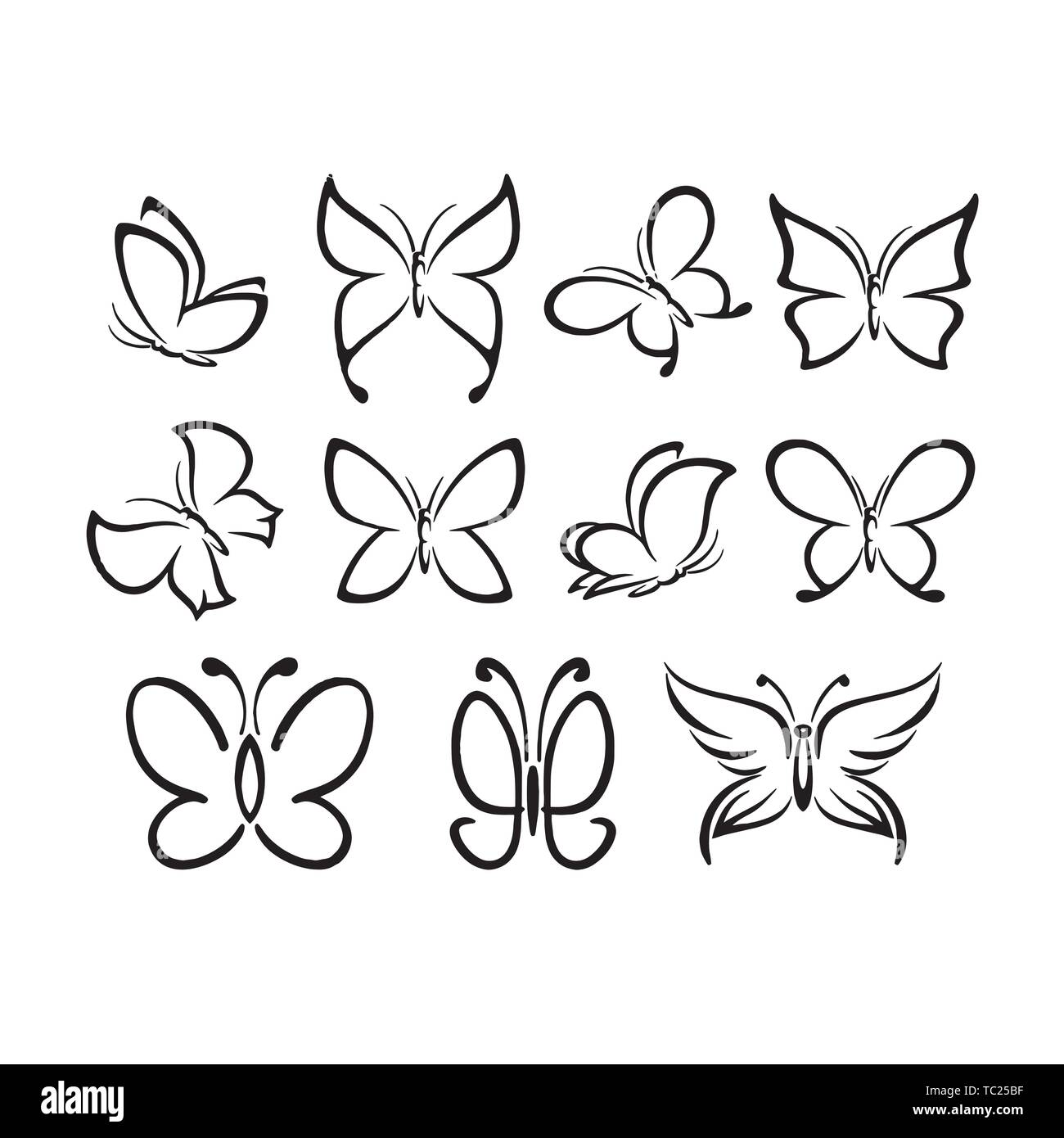 insect butterfly outline vector. nature coloring book ...