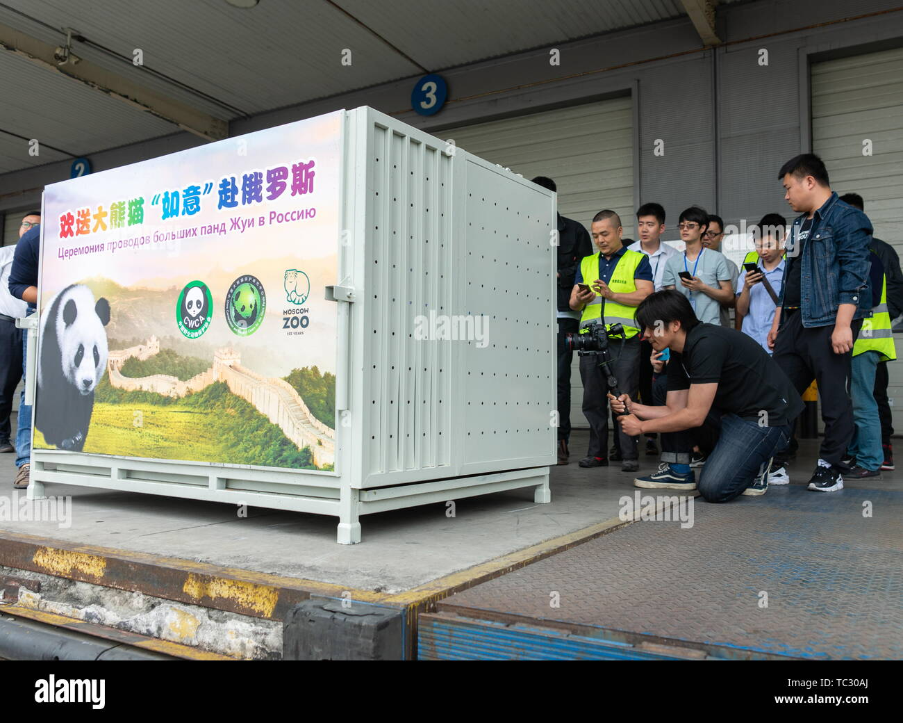 China. 29th Apr, 2019. CHENGDU, SICHUAN PROVINCE, CHINA - JUNE 5, 2019: Pictured in this file image dated April 29, 2019 are people during a ceremony to send giant pandas. 3-year-old Ru Yi and 2-year-old Ding Ding are sent to the Moscow Zoo. The opening of the Moscow Zoo's panda pavilion is to be attended by Russian President Vladimir Putin and Chinese President Xi Jinping. File image/Artyom Ivanov/TASS Credit: ITAR-TASS News Agency/Alamy Live News - Stock Image