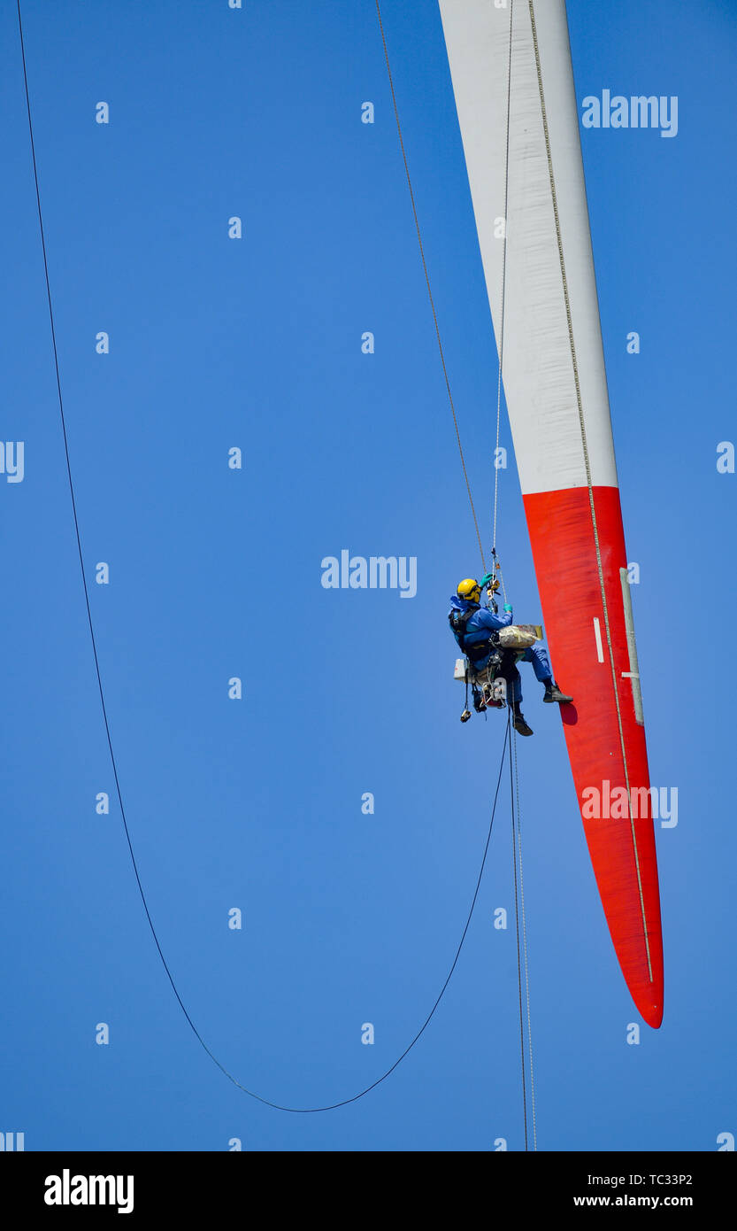 Sieversdorf, Germany. 05th June, 2019. An industrial climber works at the tip of a rotor blade of a wind turbine. The technician, who is secured with two holding ropes, repairs damage to this 44-meter-long rotor blade of a 2 megawatt (MW) turbine. Credit: Patrick Pleul/dpa-Zentralbild/ZB/dpa/Alamy Live News - Stock Image