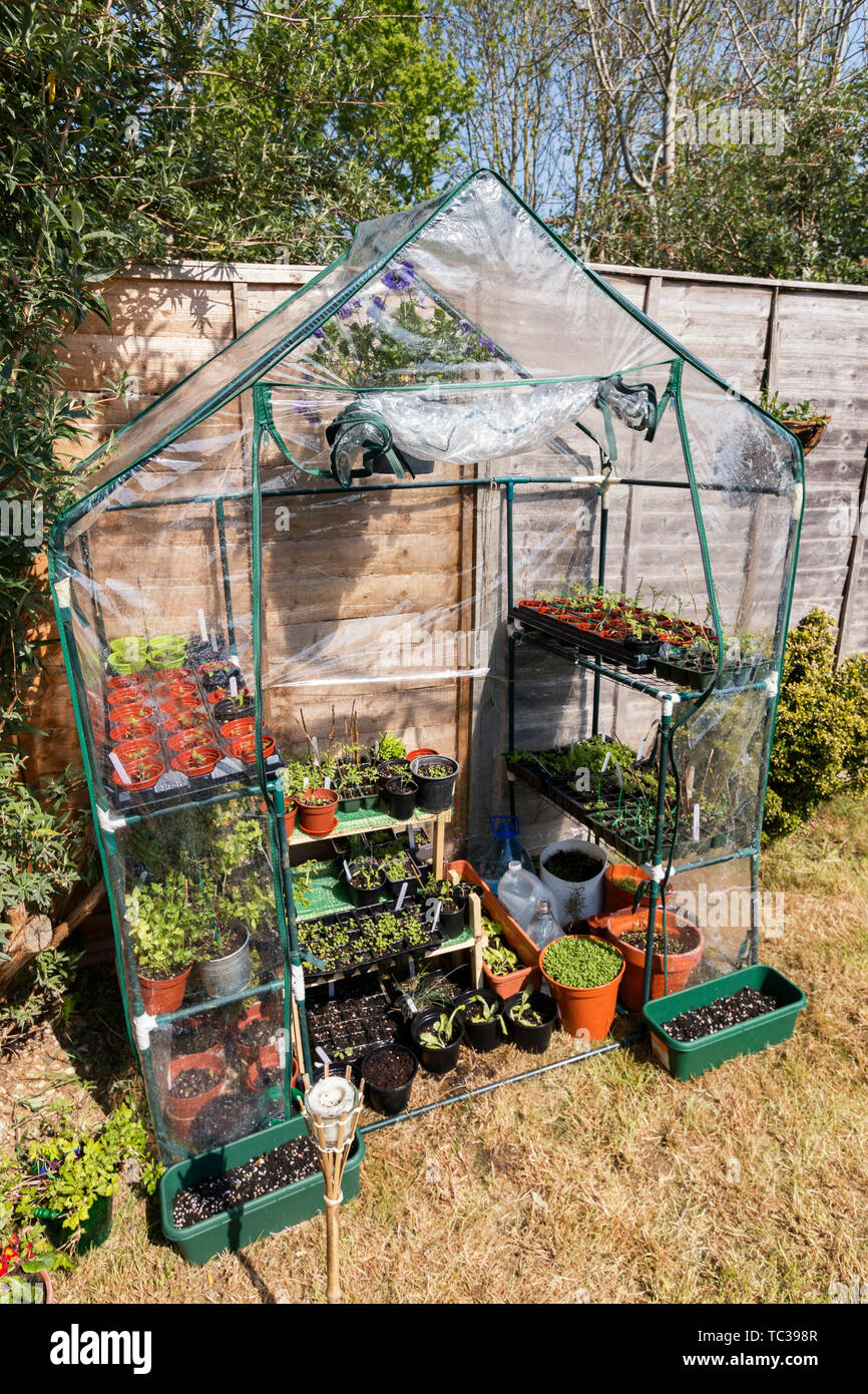 Phenomenal Greenhouse In Garden Full Of Seedling Plants And Flowerpots Home Interior And Landscaping Dextoversignezvosmurscom