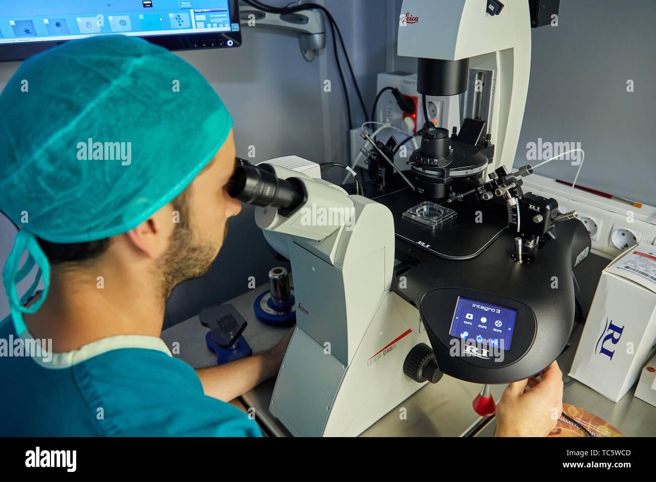 Embryology, ARU, Assisted Reproduction Unit, IVF, In Vitro Fertilization, Intra Cytoplasmic Sperm Injection, Hospital, Donostia, San Sebastian, Stock Photo