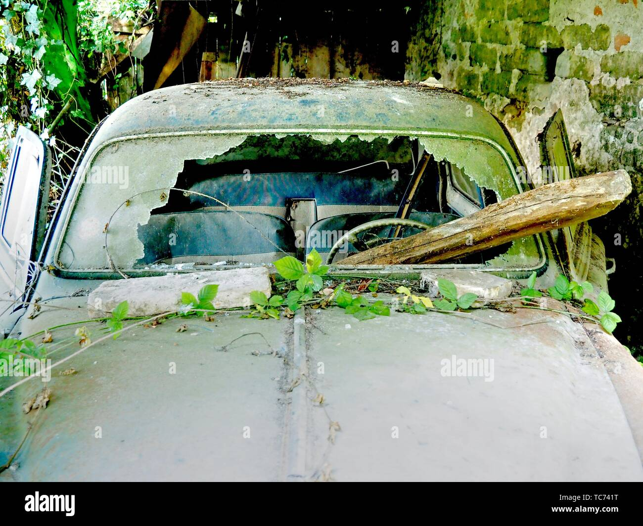 derelict, overgrown Peugeot 403 near Lauzun, Lot-et-Garonne Department, New Aquitaine, France. - Stock Image