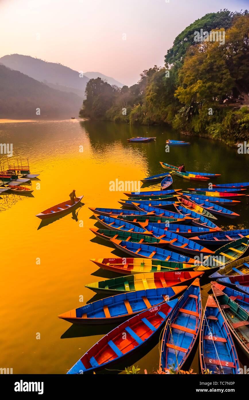 Rowboats, Phewa Lake, Pokhara, Nepal. - Stock Image