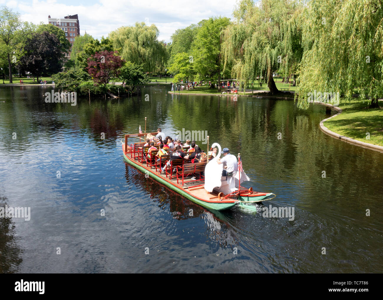 Lagoon with Swan boat and in Boston Public Garden adjacent to Boston Common, part of the Emerald Necklace group of parks by Frederick Law Olmstead Stock Photo