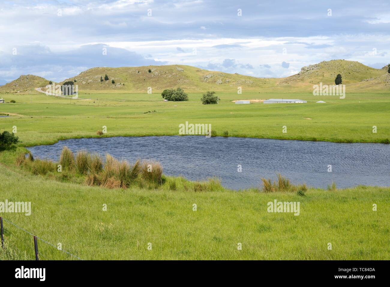 Landscape along the Central Otago Rail Trail, South Island, New Zealand. - Stock Image