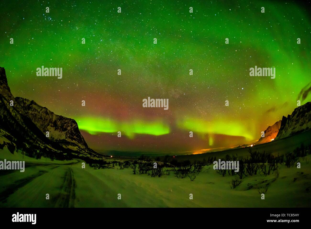 Northern Lights (Aurora Borealis), Gimsoya Island, Lofoten Islands, Arctic, Northern Norway. - Stock Image