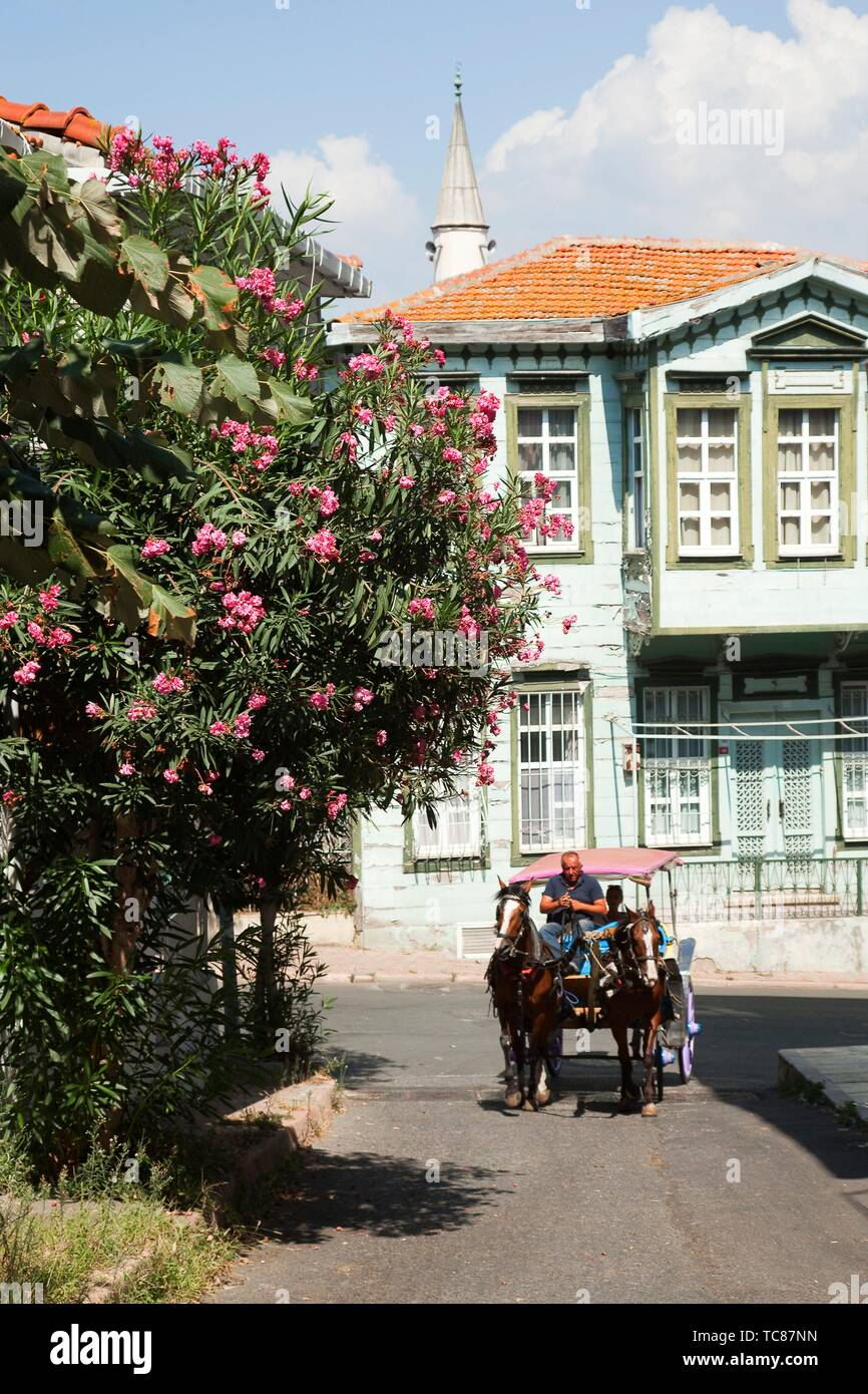 Horse carriage in front of the traditional wooden houses covered with flowers in Heybeliada-Halki, Prince Islands, Marmara Sea, Istanbul, Turkey, - Stock Image