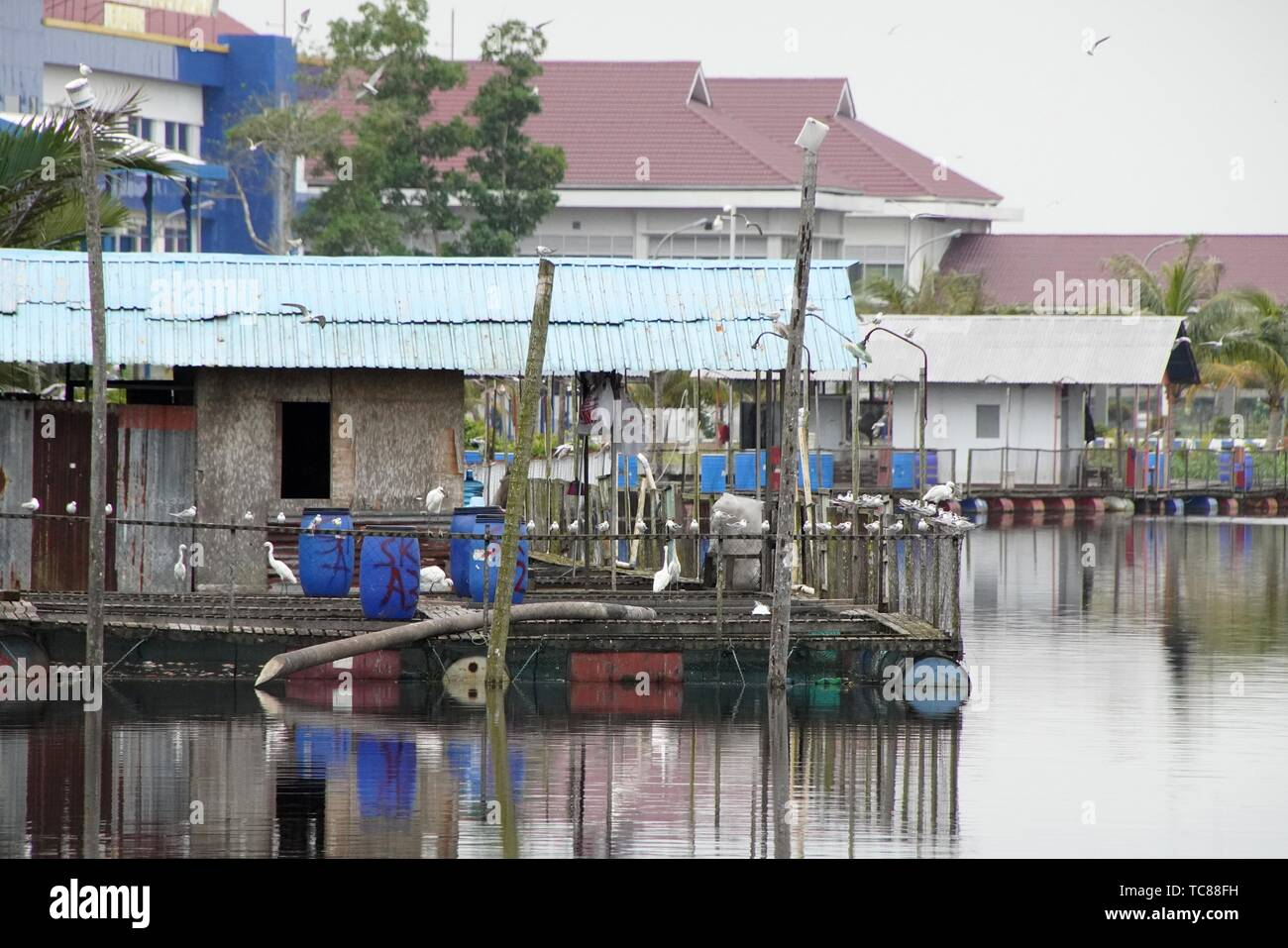 Shophouses by the riverbank of Mempawah town, West Kalimantan, Indonesia - Stock Image