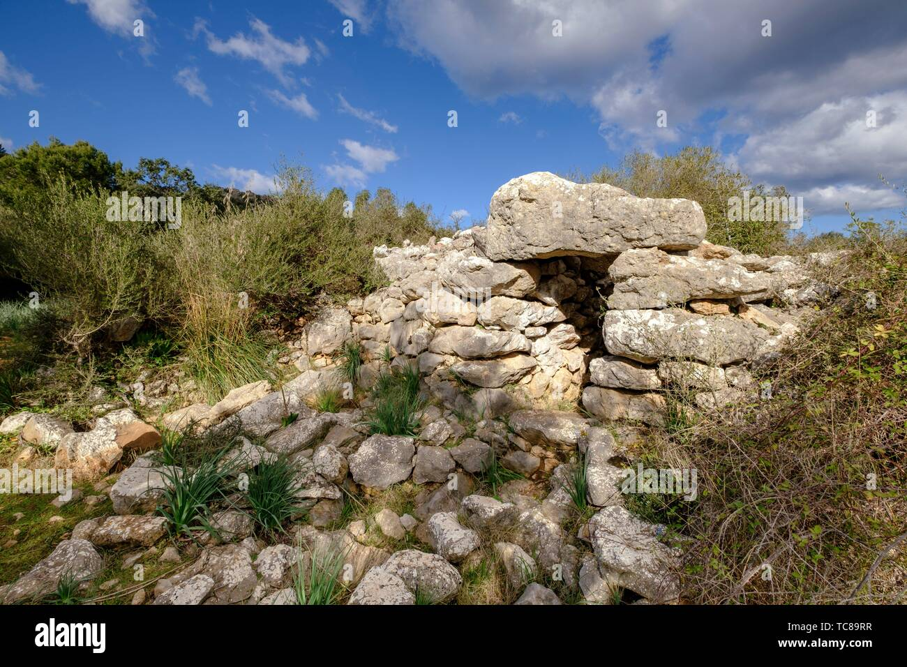 Talaiot, Son Ferrandell-Son Oleza, I milenio a C. , Valldemossa, Mallorca, Balearic islands, spain. - Stock Image