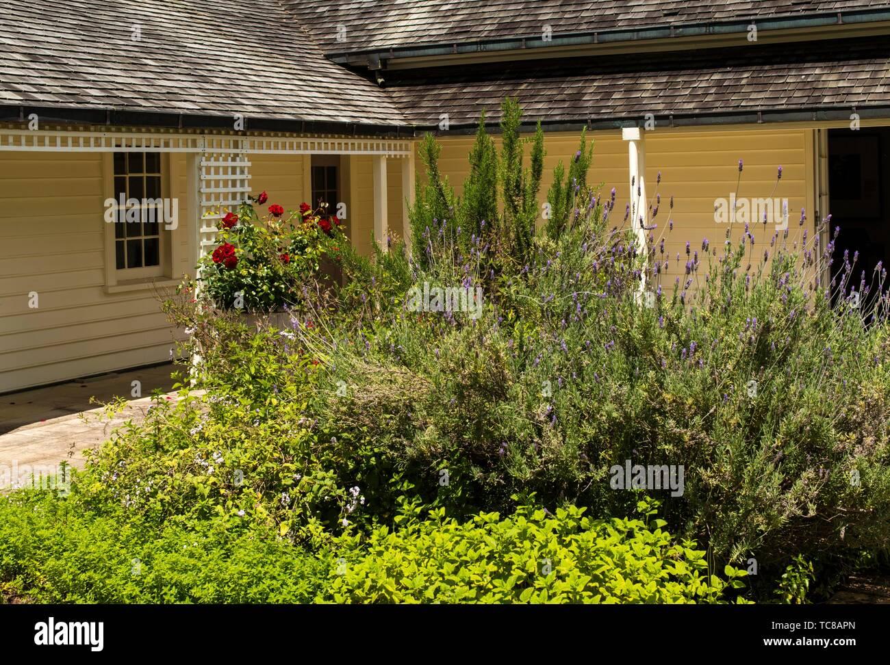 The Treaty House at the Waitangi Treaty Grounds, New Zealand. - Stock Image