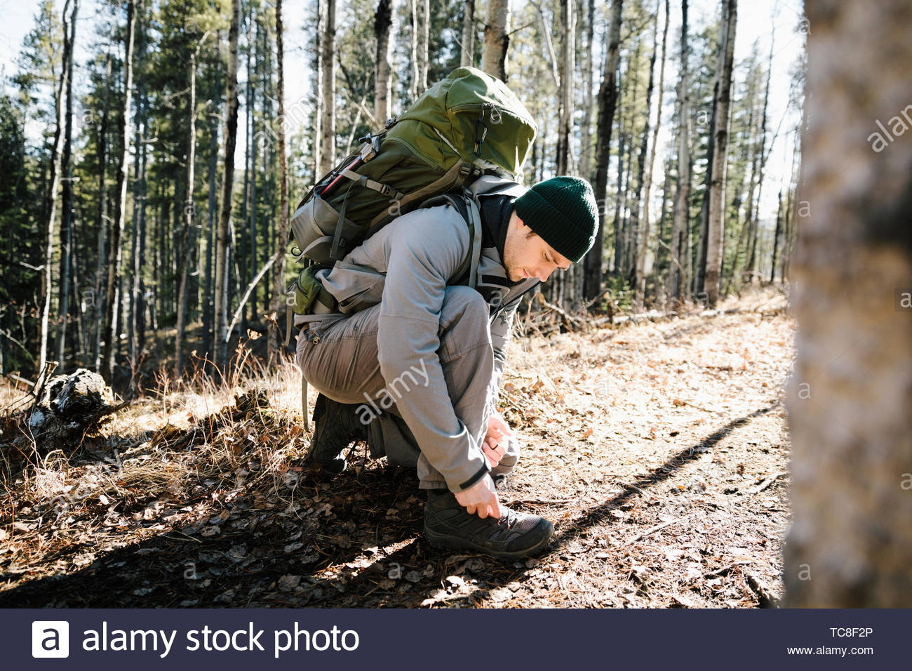 Man with backpack hiking, tying shoe in sunny woods - Stock Image
