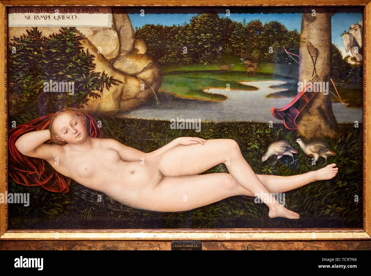 """""""The Nymph at the Fountain"""", 1530-1534, Lucas Cranach the Elder, Thyssen Bornemisza Museum, Madrid, Spain, Europe Stock Photo"