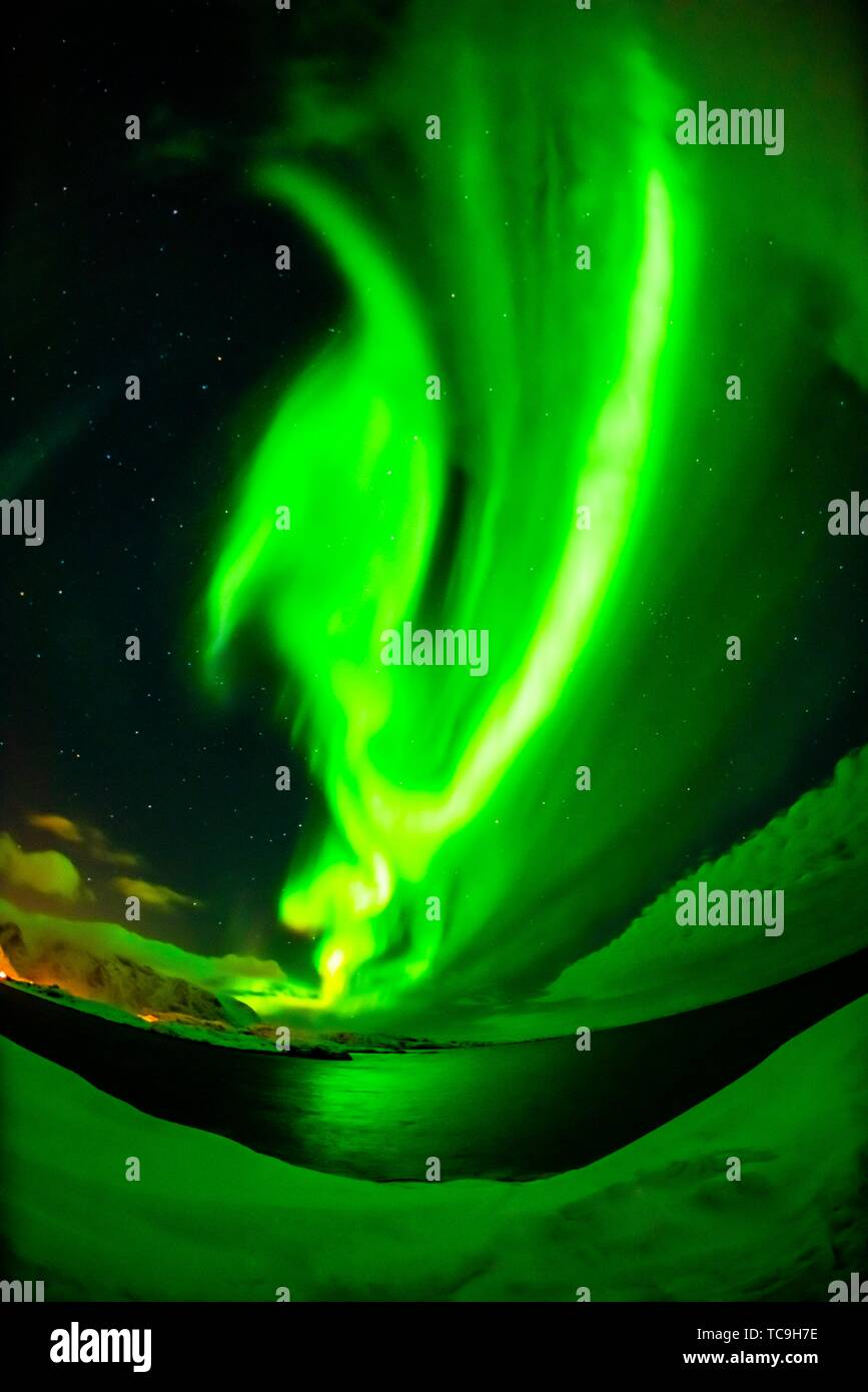 Dancing Northern Lights (Aurora Borealis) seen from along the E10 near Reine, Moskenoesoya Island, Lofoten Islands, Arctic, Northern Norway. - Stock Image