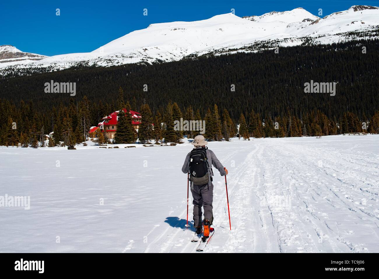 A man, 67, skis near Num-ti-Jah Lodge on Bow Lake, Banff National Park, Alberta, Canada. - Stock Image