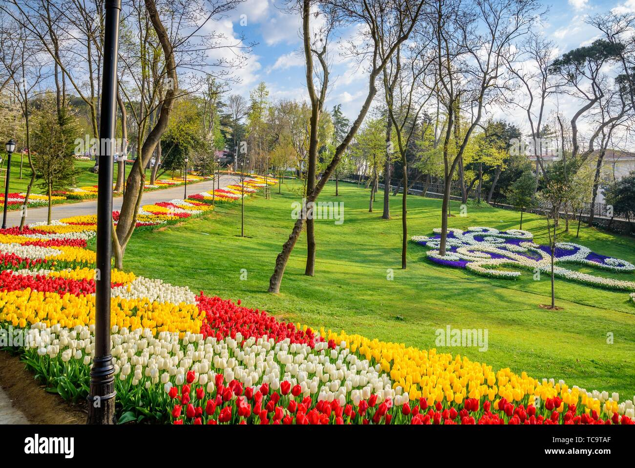 Traditional Tulip Festival in Emirgan Park, a historical urban park located in Sariyer district. Tourists and locals visit and spend time. - Stock Image