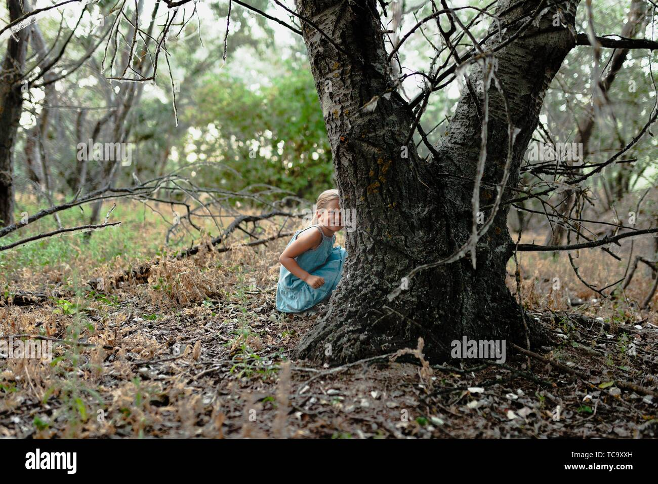 Young blonde girl crouched on the ground near a tree wearing a dress in the sunset field. Stock Photo