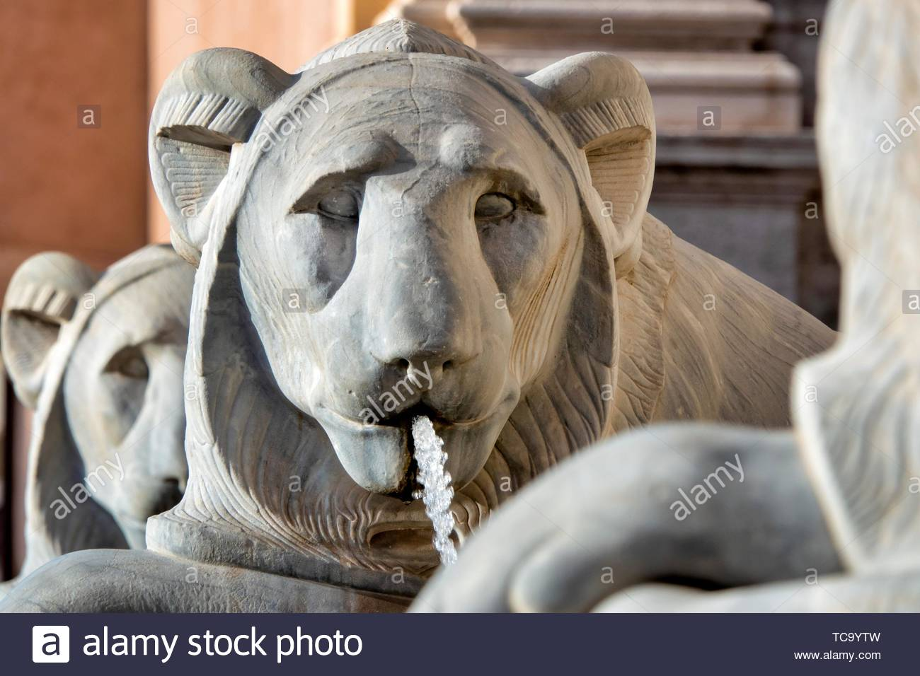 Close up shot of a statue of an egyptian lion in the Fontana dellâ.Acqua Felice , Rome Italy. - Stock Image