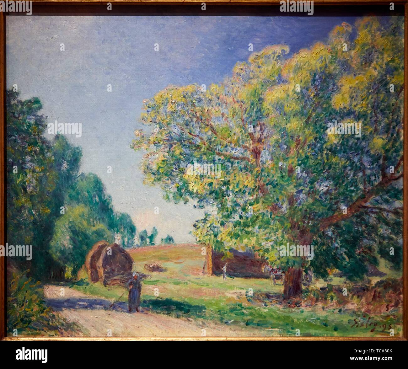'''A Forest Clearing'', 1895, Alfred Sisley, Thyssen Bornemisza Museum, Madrid, Spain, Europe - Stock Image