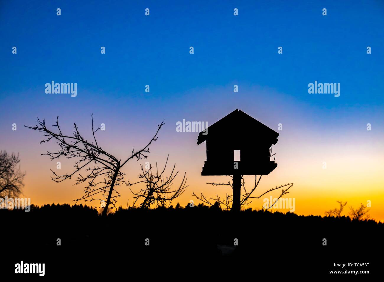 Bird house at sunset in Sweden. - Stock Image