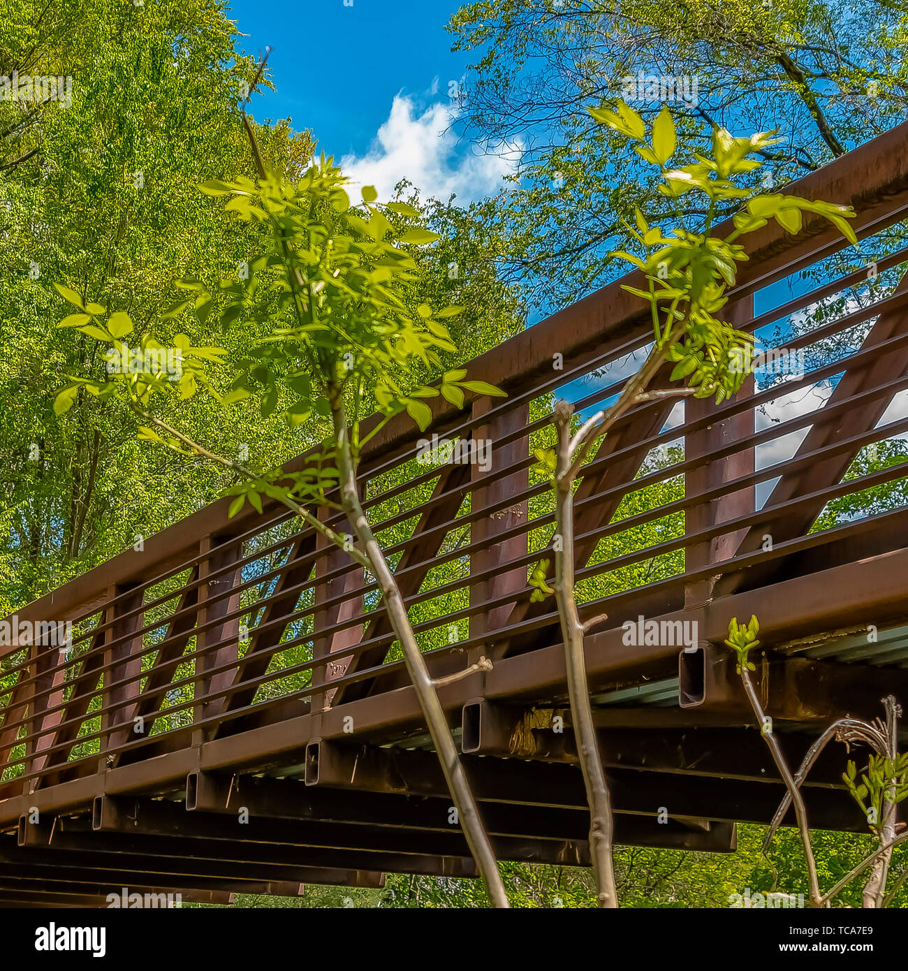 Square Bridge with metal guardrails over the glistening water at Ogden River Parkway - Stock Image