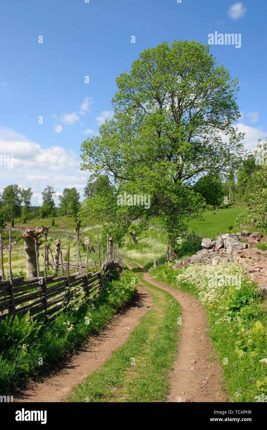 Countryside landscape with a small road. - Stock Image