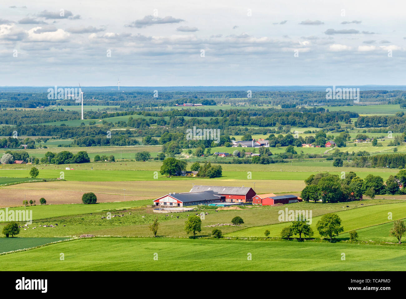 View of a rural landscape with fields and farm - Stock Image