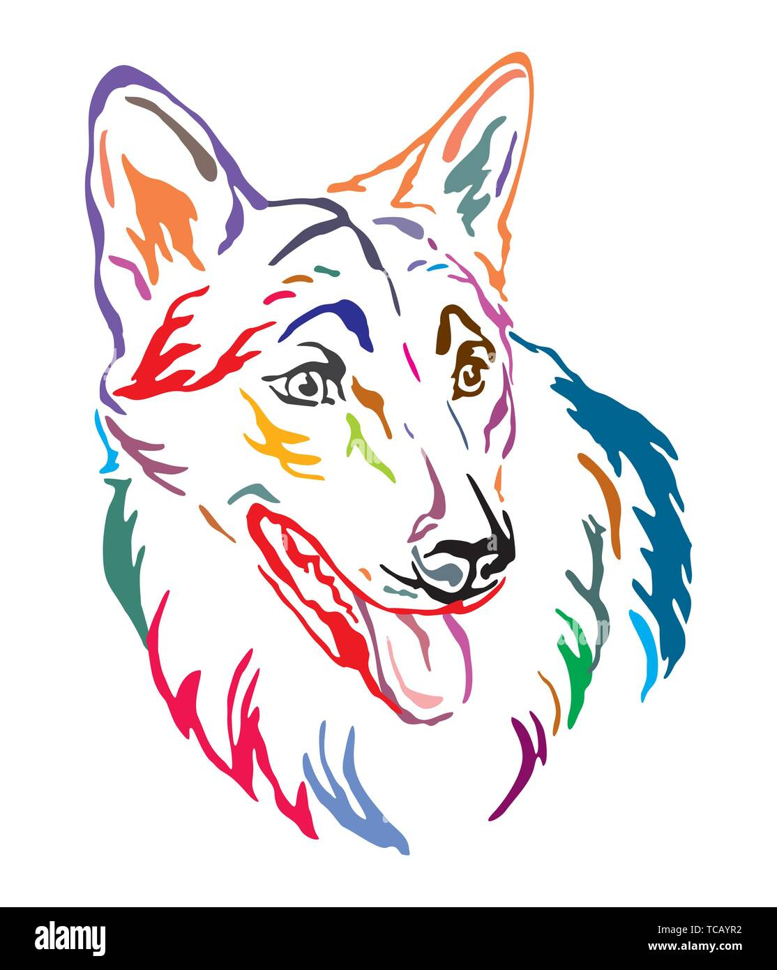 Colorful decorative outline portrait of Czechoslovakian Wolfdog Dog looking in profile, vector illustration in different colors isolated on white back - Stock Image