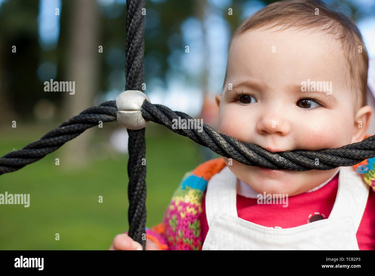 11 month baby girl bitting playground rope as it was a teether. Biting and Teething for babies concept. - Stock Image
