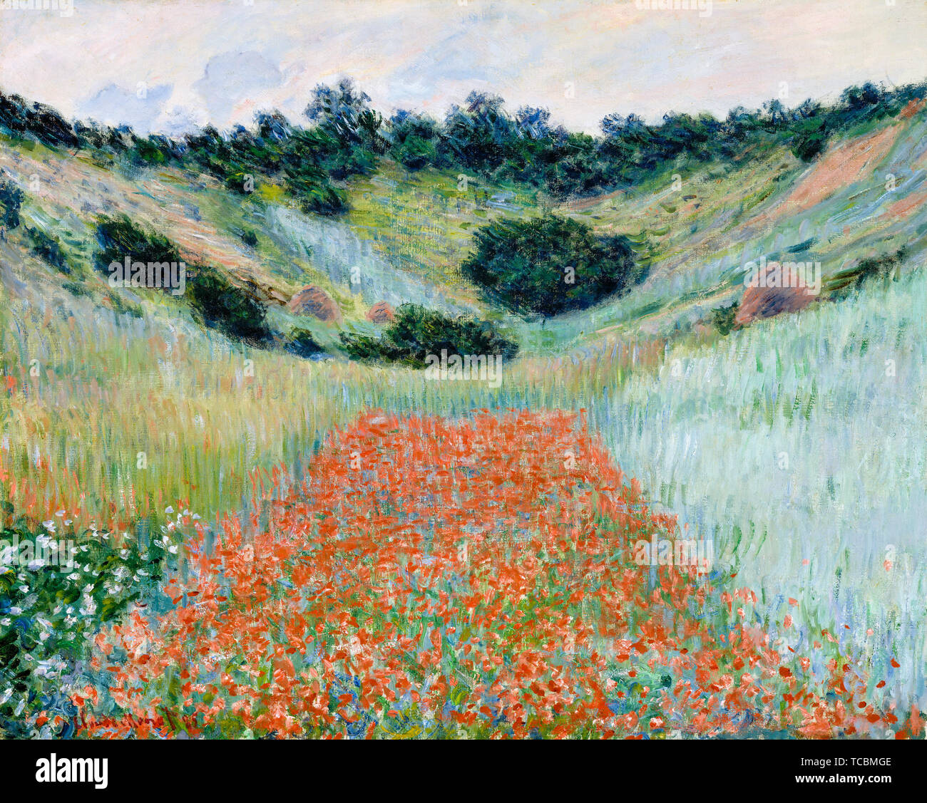 Monet Landscape High Resolution Stock Photography And Images Alamy
