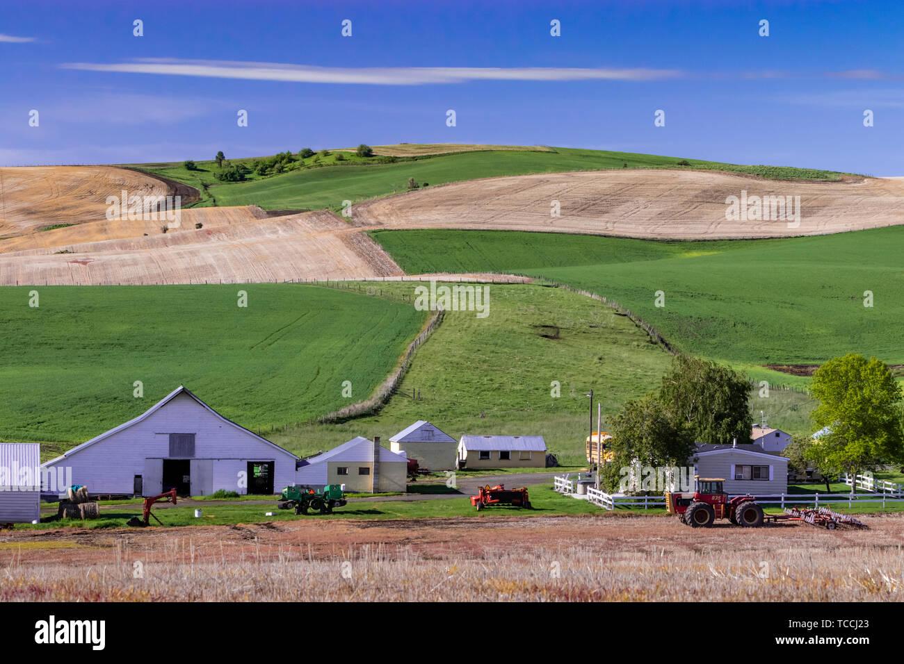 Farm buildings in the rolling hills near Grangeville, Idaho, USA. - Stock Image