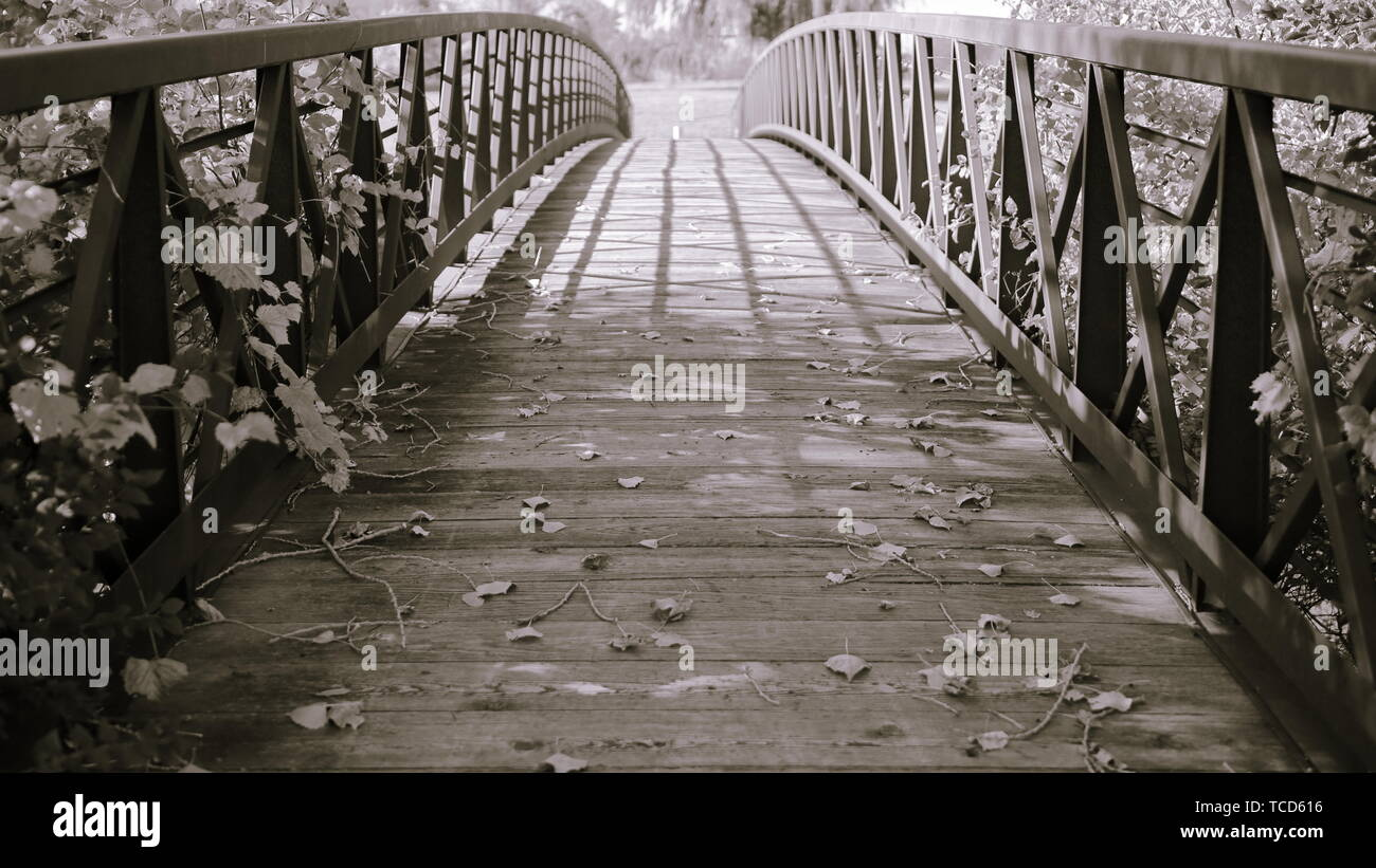 View of path across wooden foot bridge with subtle brown and purple tones - Stock Image
