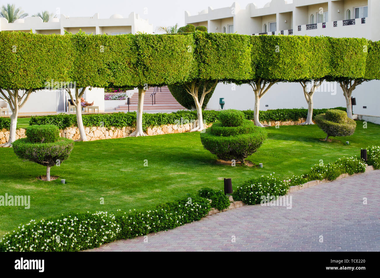 Hotel With Well Groomed Territory Beautiful Lawn With Green Grass And Beautiful Flowers Of Landscape Design At Five Star Hotel Territori Summer In S Stock Photo Alamy