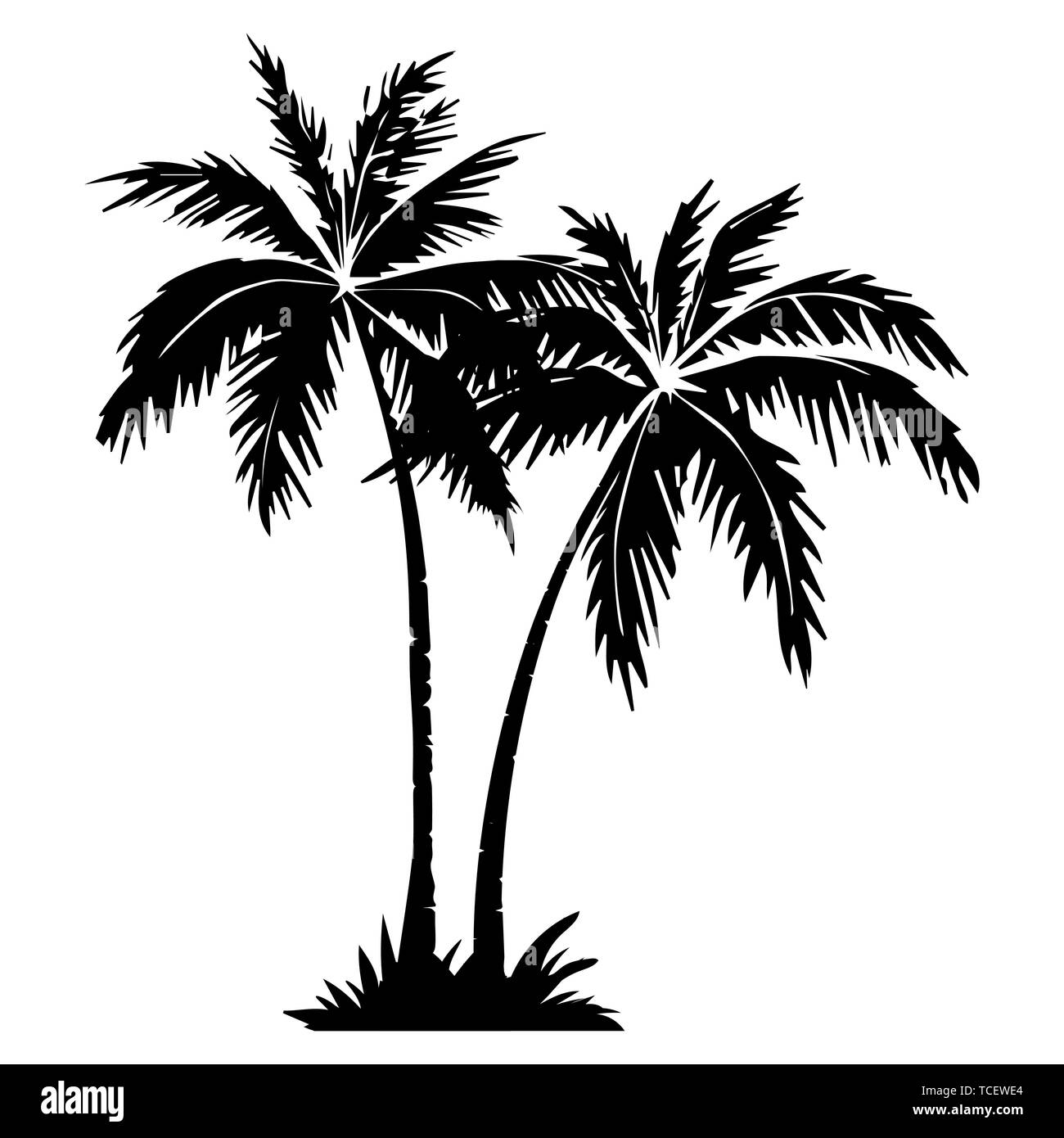 Palm tree silhouette. 2 palm trees isolated on white background. Vector illustration. for print, icon design, web, home decor, fashion, surface, graph - Stock Vector