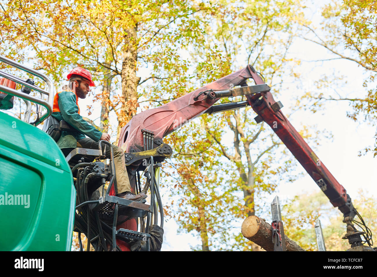 Crane operator on forwarder crane at logging or loading wood Stock Photo