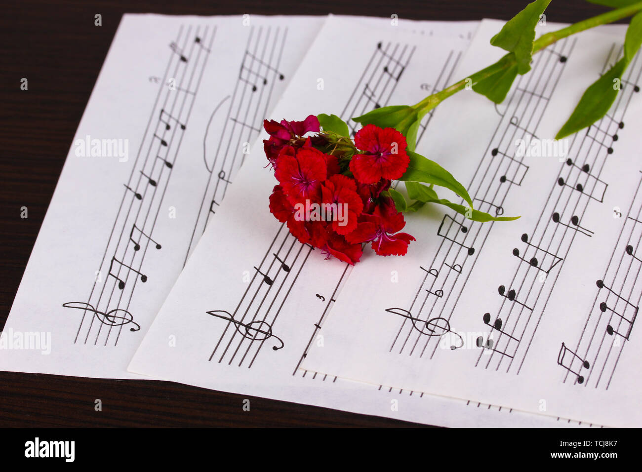 Musical notes and flower on wooden table - Stock Image