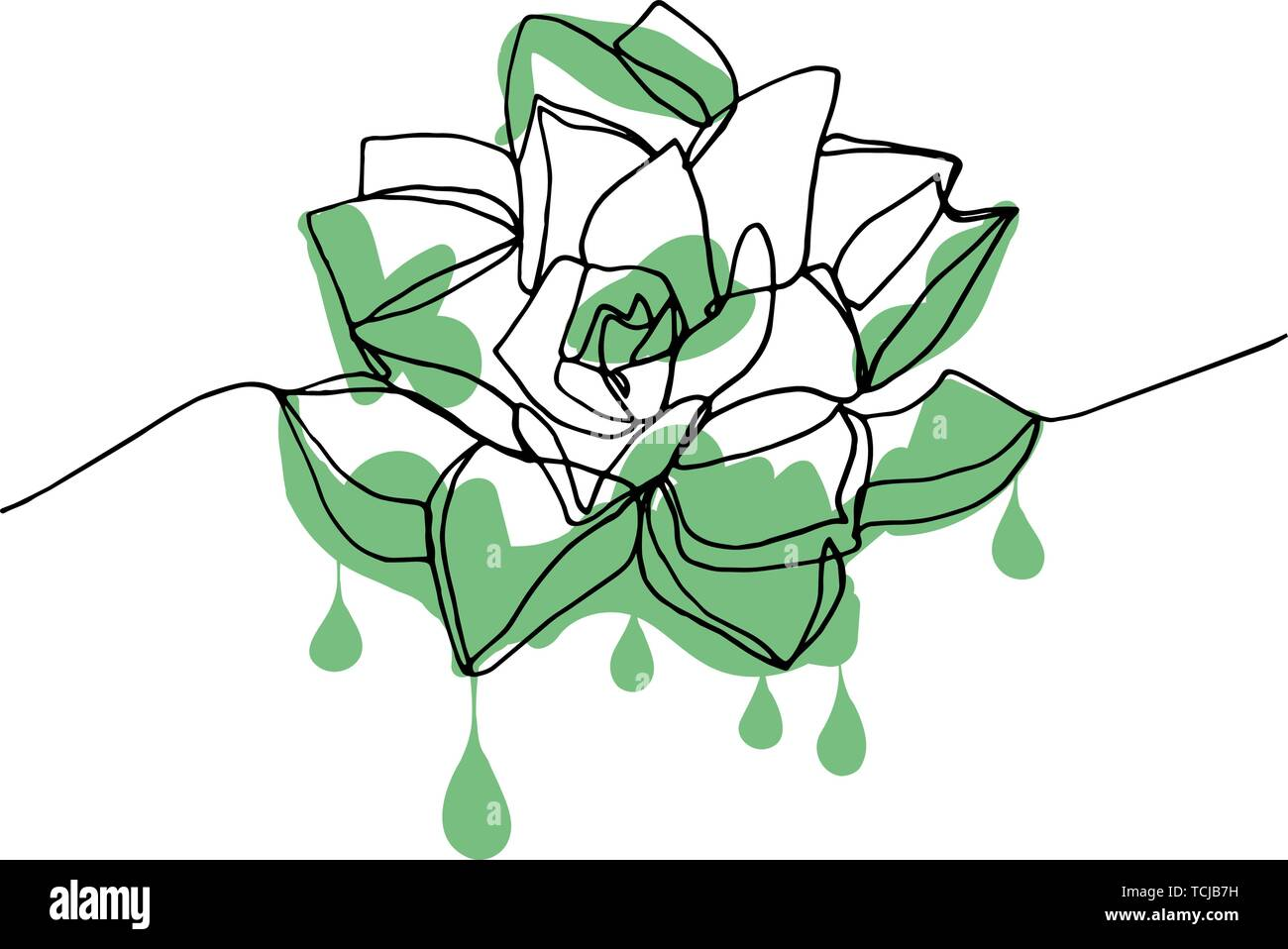 Hand Drawn Minimalistic Succulent With Dripping Green Pain One Single Continuous Black Line Simple Drawing Isolated On White Background Stock Vecto Stock Vector Image Art Alamy