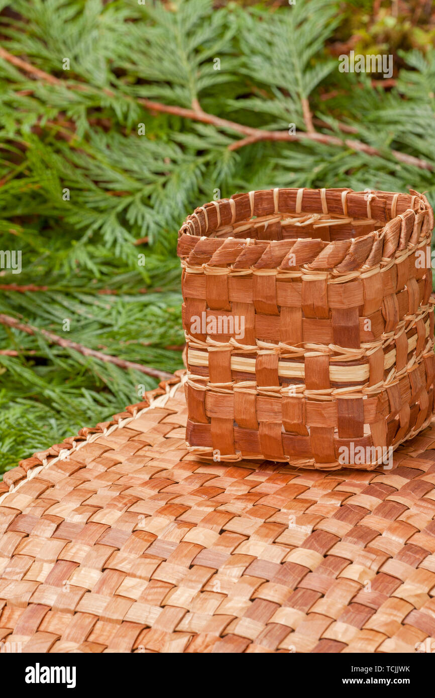 Hand-woven mat and basket made from the pliant inner bark of a Western Red Cedar tree, resting on Western Red Cedar branchlets. - Stock Image