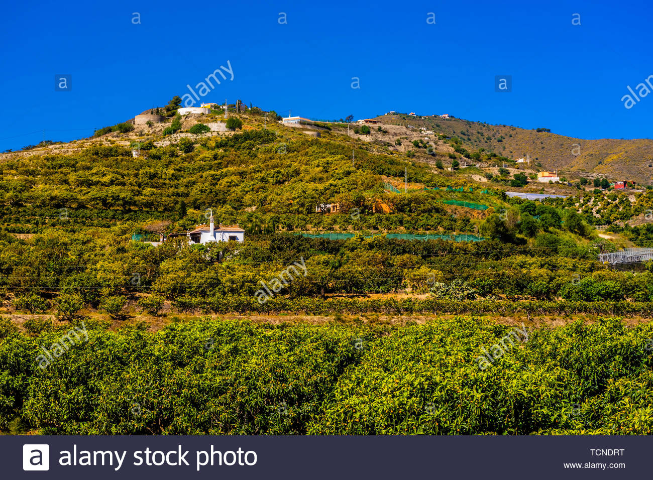 View from the town of Salobrena on the Costa Tropical of Granada Province, Spain with its Moorish castle atop the hill. Stock Photo