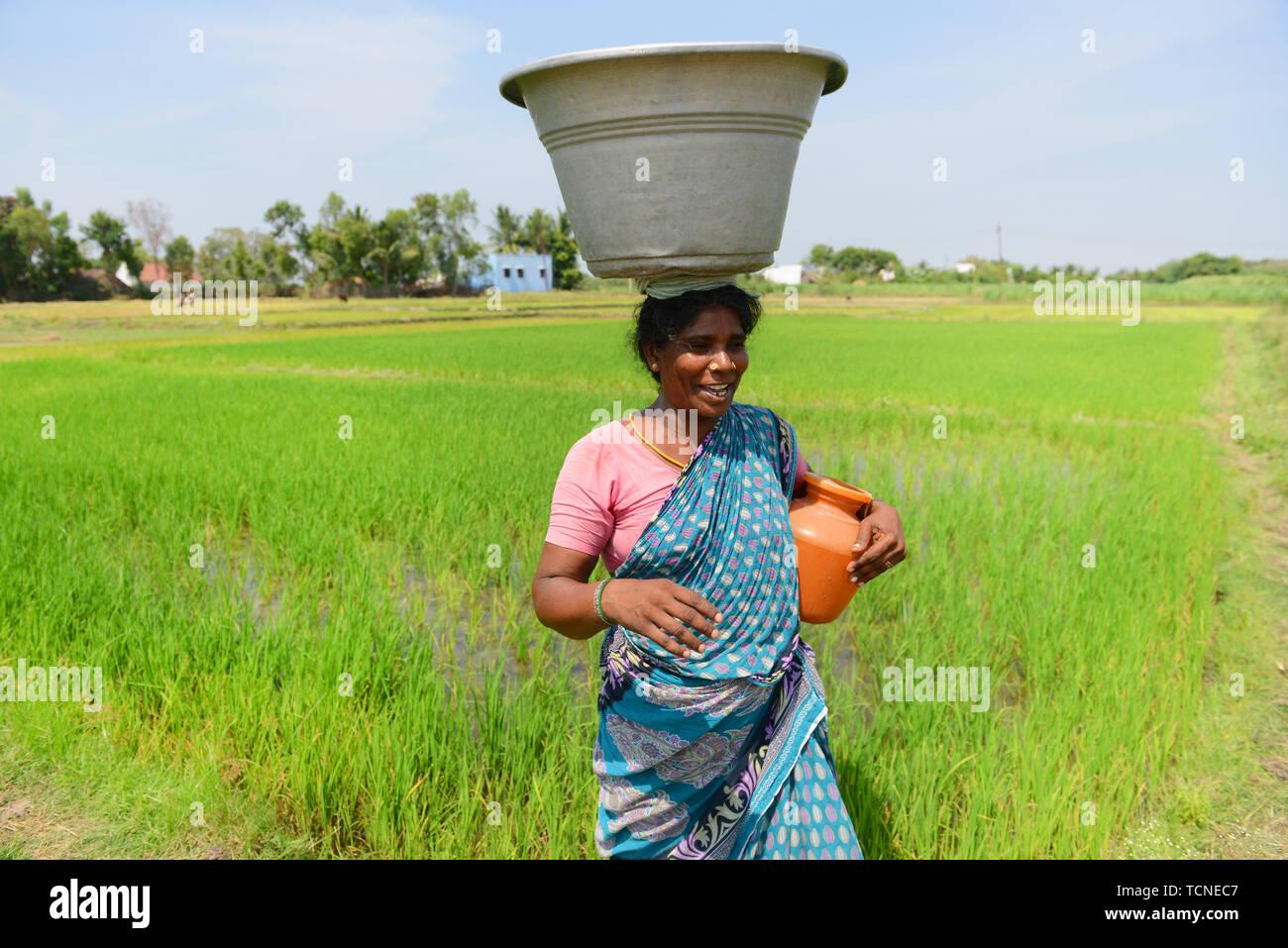 Tamil Woman Stock Photos & Tamil Woman Stock Images - Alamy