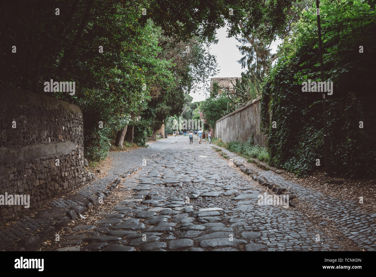 Rome, Italy - June 23, 2018: Panoramic view of Appian Way (Via Appia) is one of the earliest and strategically most important Roman roads of the ancie - Stock Image