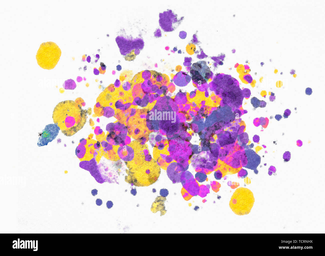 Splatter paint isolated on white background made with punchy magenta and yellow colours - Stock Image