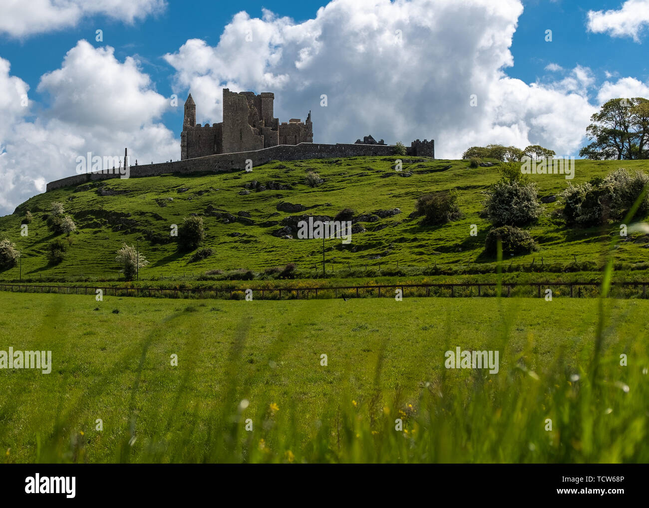 A view across green fields to the magnificent Rock of Cashel and the stone fortress and abbey, against a bright blue sky and fluffy white clouds, nobo - Stock Image