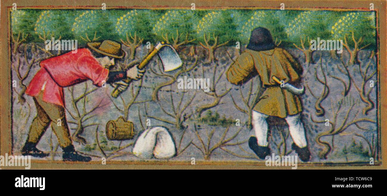 March   Working In The Vineyard, 15th Century, (1939). Two Labourers