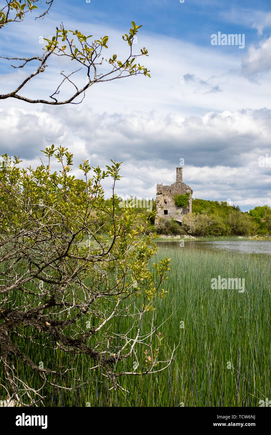 A view of Cahermacrea Castle from across the lake in front of the castle, this can be seen on the Dromore Reserve Wood Walk in County Clare, Ireland,  - Stock Image