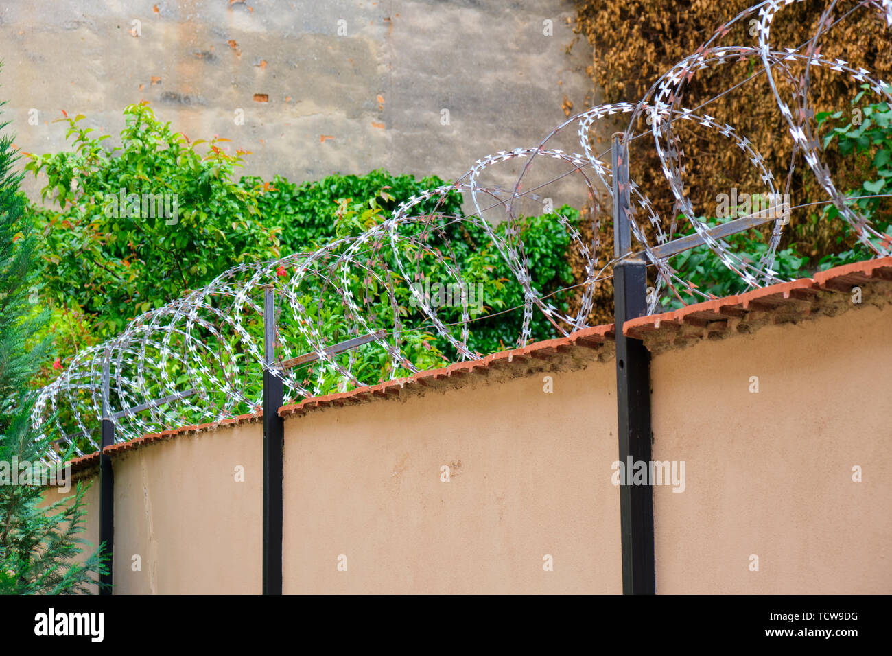 Barbed wire on a wall, security measure against thieves / intruders. - Stock Image
