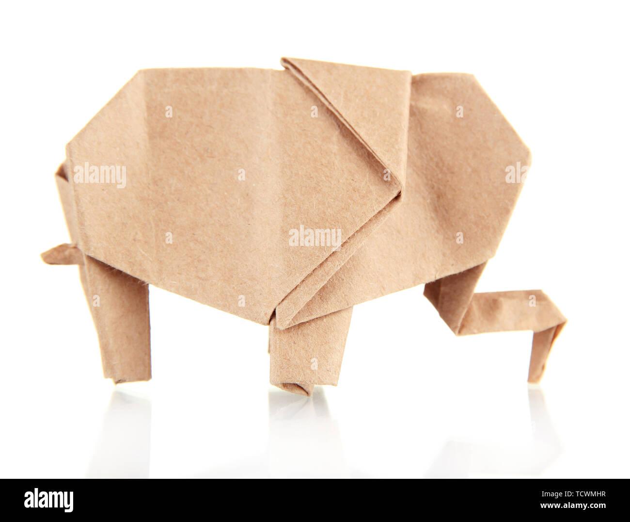 Libro origami animals | 1076x1300