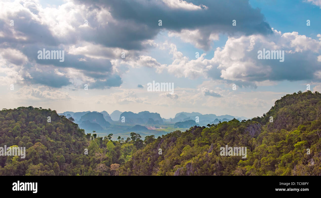 scenic view to rain forest in Krabi Thailand - Stock Image